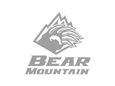 Big Bear Discounted Rental